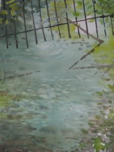 Reflets 1 img_24371-225x300